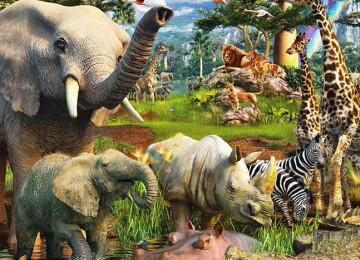 Как интересно рассказать детям об африканских животных?