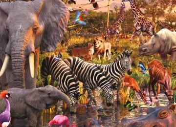 Этот замечательный мир животных