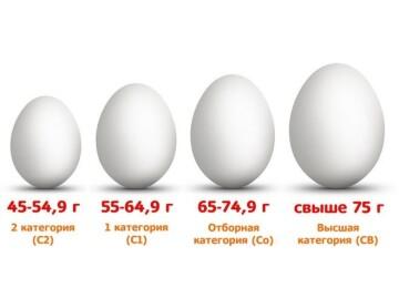 Куриные яйца в рационе малыша: когда, сколько и какие яйца давать ребенку