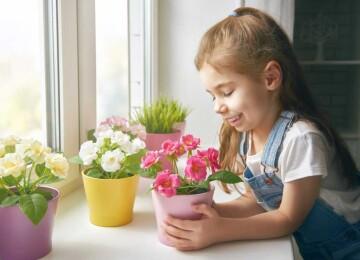 Выращиваем цветы для мамы