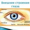 Структура дефекта у детей с нарушением зрения