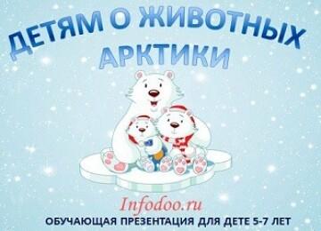 Презентация «Детям о животных Арктики»