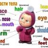 Части тела на английском для детей: 5 способов выучить быстро