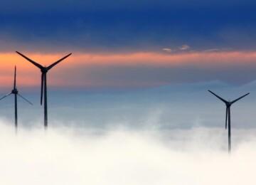 Туман — виды, причины и условия образования явления