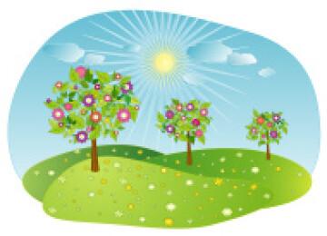 Методика «Три дерева» — зеркало семейных отношений