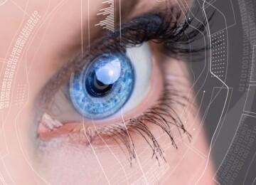Человеческое зрение — из чего состоит глаз и как он работает