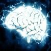 Мозг — пульт управления