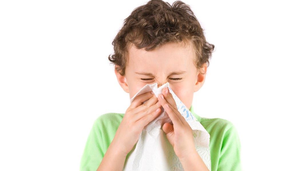 allergikinfo-0041.jpg