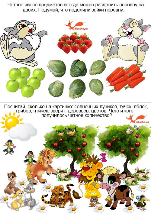 chetnye-i-nechetnye-chisla-ot-1-do-20-zadaniya-v-kartinkakh-mini_2.png