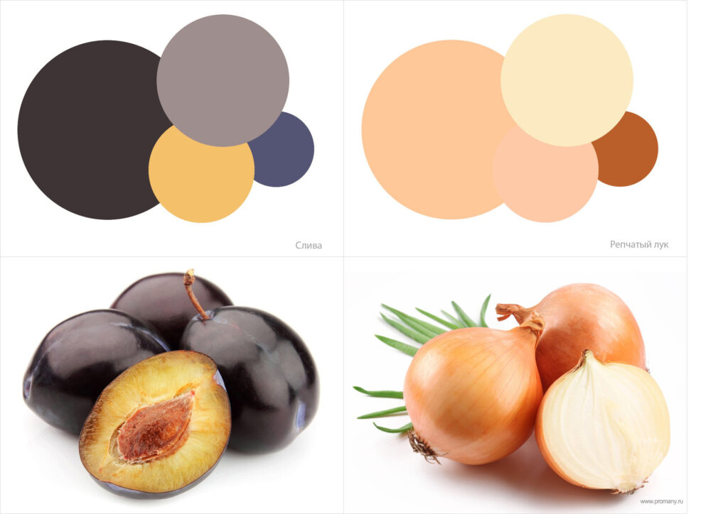 color-1-1024x724.jpg