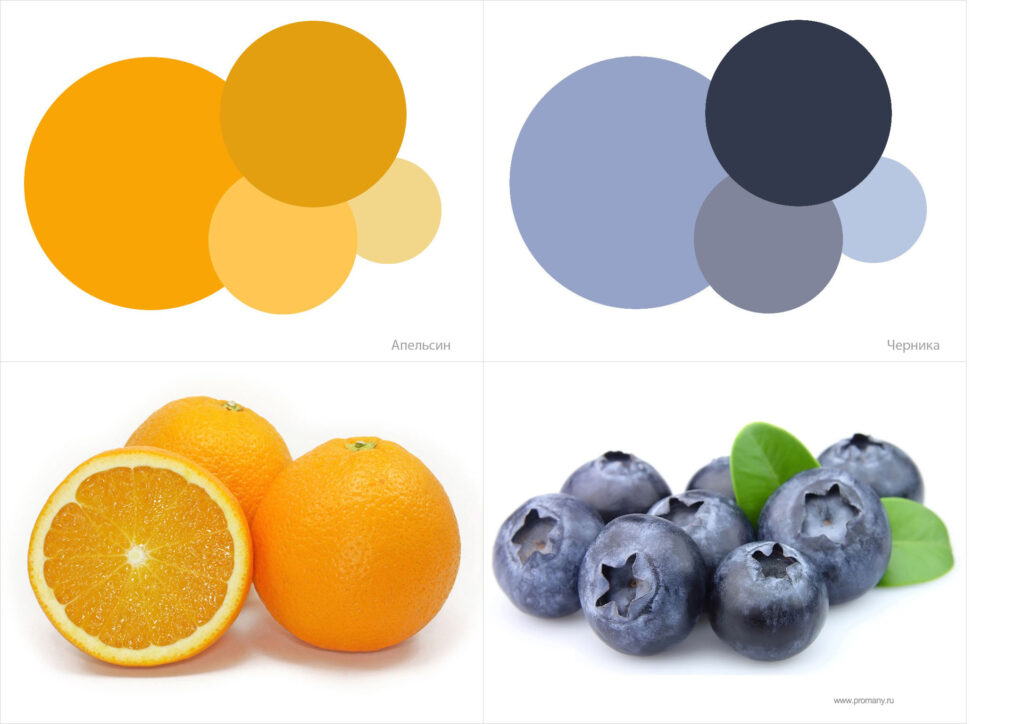 color-4-1024x724.jpg