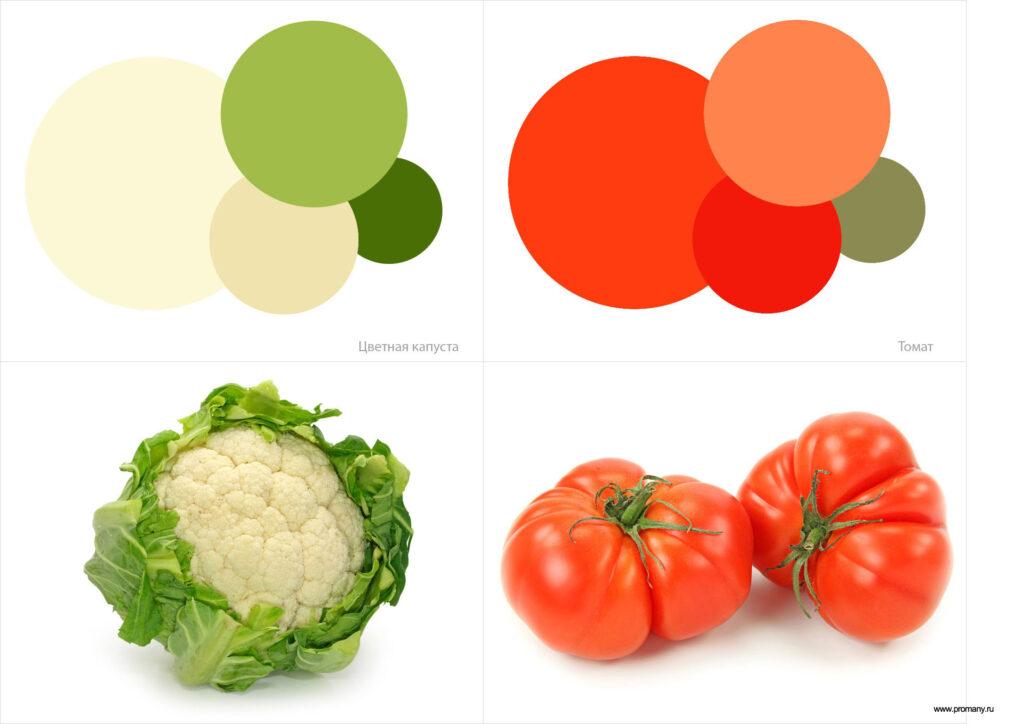 color-5-1024x724.jpg