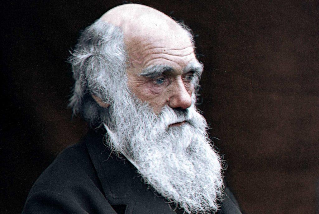 -Дарвин.jpg