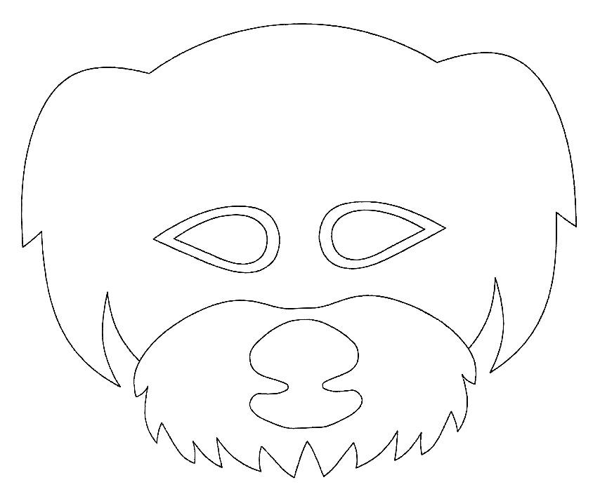 dog-5-maska.jpg
