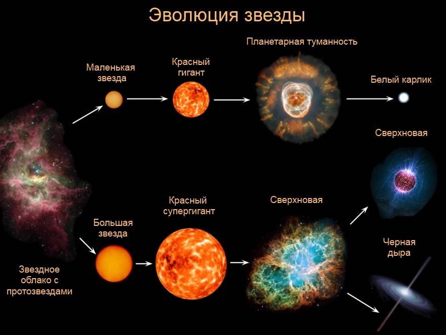 E`volyutsiya-zvezdyi.jpg