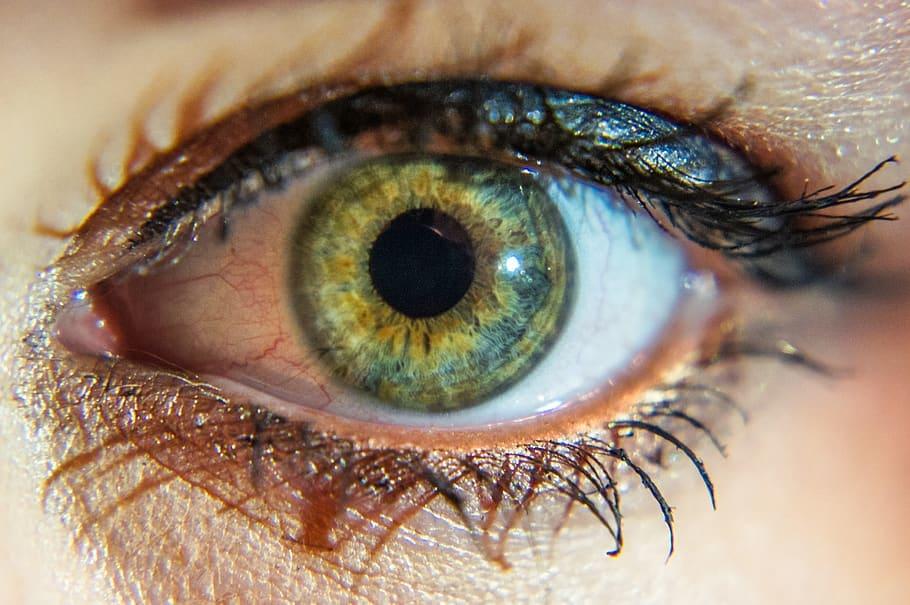eye-macro-green-pupil.jpg