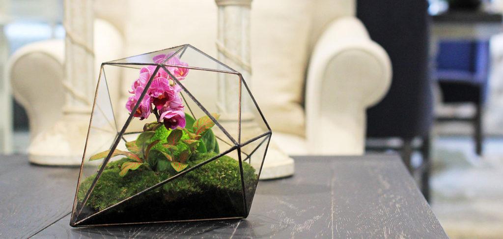 florarium-cvety.jpg