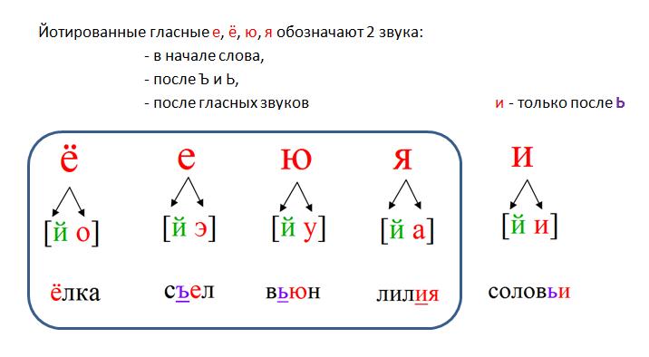 foneticheskiy-analiz-slova-4.png