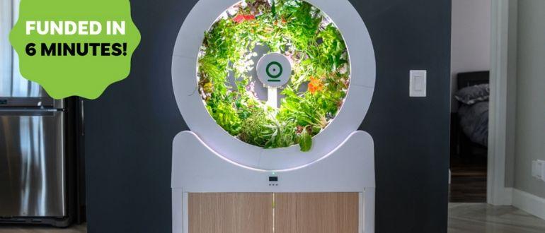 incubator.jpg