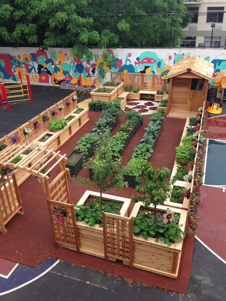 KG-Program-Spotlights-Carson-Daly-KidsGardening-Plant-a-Garden-in-Brooklyn-KidsGardening.jpg