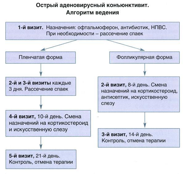 konjuktivit-lechenie.jpg