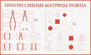 matritsa-dj-ravena-dlya-izucheniya-detey-s-narusheniem-sluha-.jpg