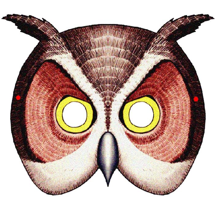 owl-2-maska.jpg