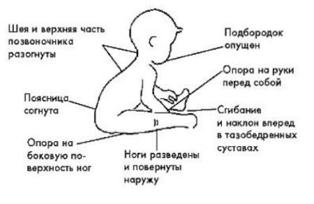 polozhenie-tela-pri-sidenii.jpg