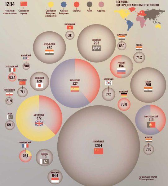 populjarnye-jazyki-rejting-infografika-542x600.jpg