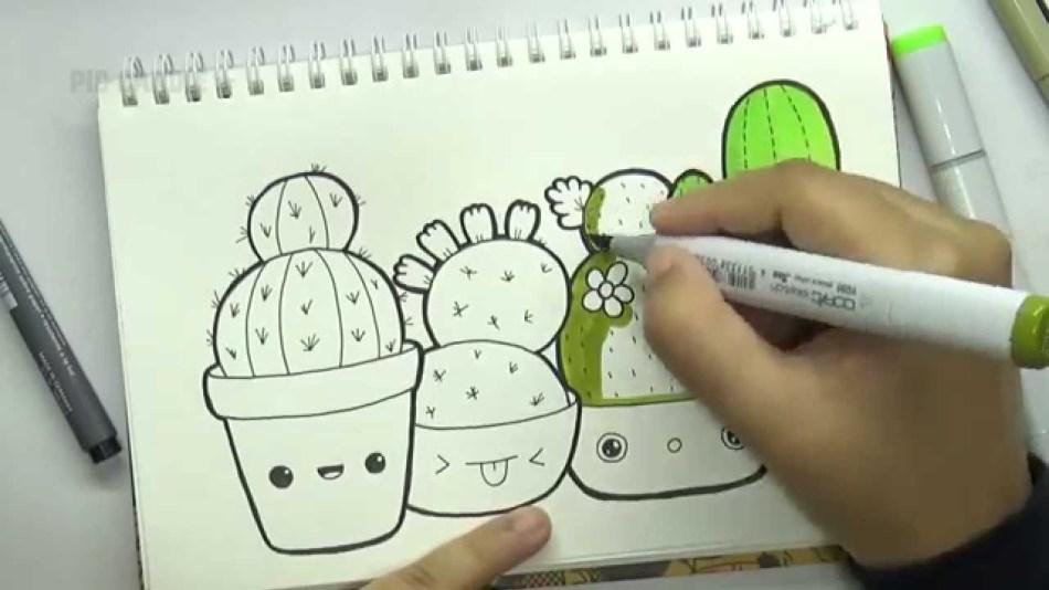 raznoobrazie-kaktusov.jpg