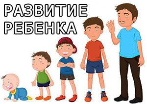 Razvitie-rebenka-300x212.jpg