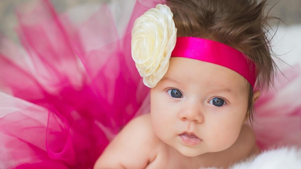 Roses_Infants_Little_420996.jpg