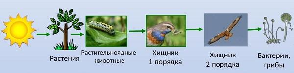 slide-35.jpg