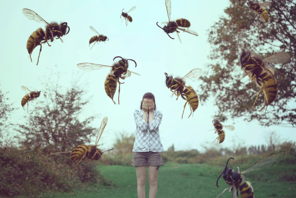 -стоит-бояться-пчел-фото.jpg