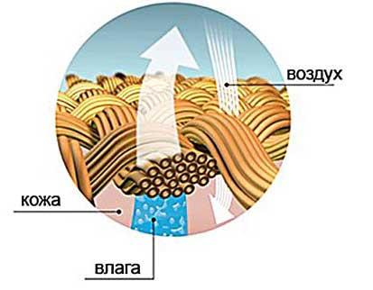 struktura-tkani.jpg