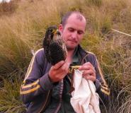 thumbs_golder_associates_senior_ornithologist_dr_richard__4d26f2d480.jpg