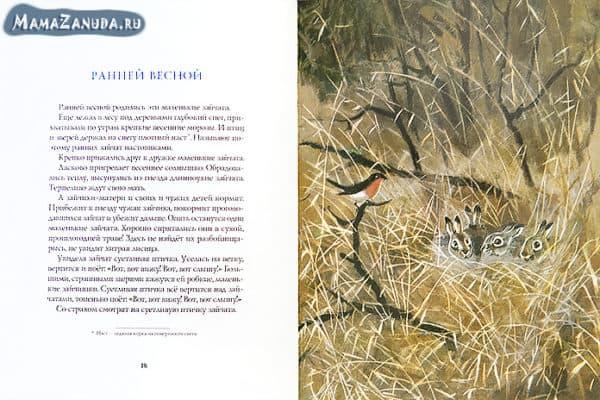 vesna-v-lesy-rech-1-600x400.jpg