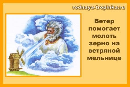 vetryanaya-mel-nitsa_1.jpg