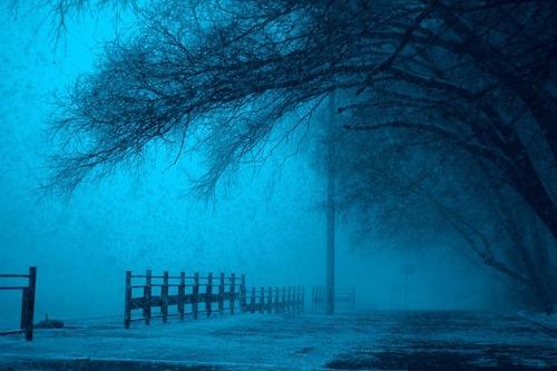winter-1732882_960_720.NBj6L.jpg