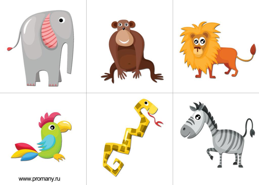 -животных-1-1024x732.jpg