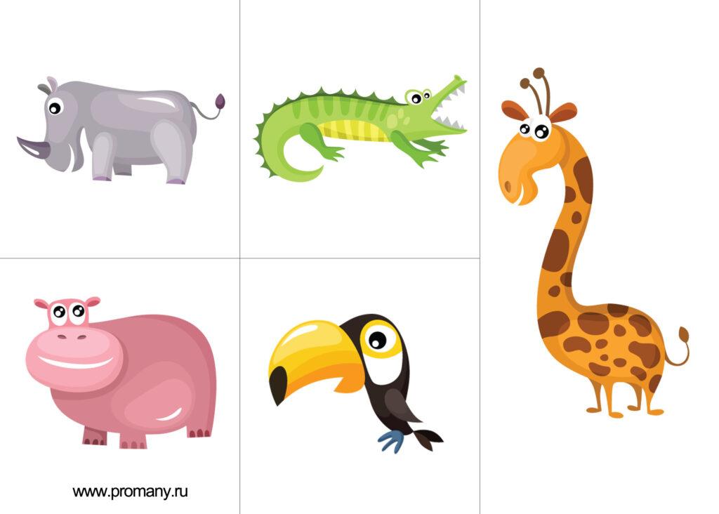 -животных-2-1024x732.jpg
